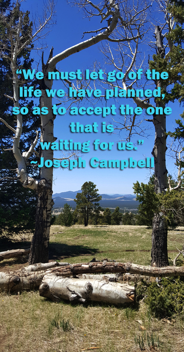 we-must-accept-life-Campbell-2017-11-5-ii.jpg